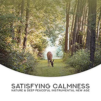 Satisfying Calmness: Nature & Deep Peaceful Instrumental New Age