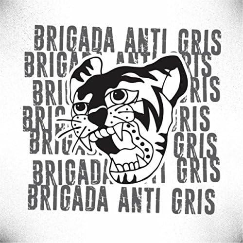 Brigada Anti Gris