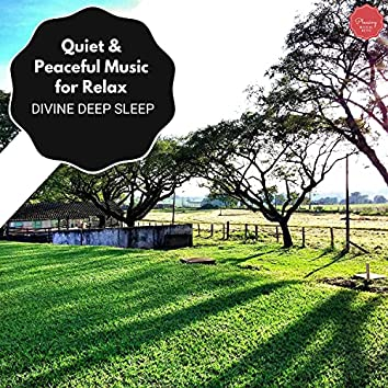 Quiet & Peaceful Music For Relax - Divine Deep Sleep