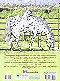 Zoom IMG-1 wonderful world of horses coloring