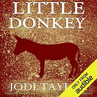 Little Donkey cover art