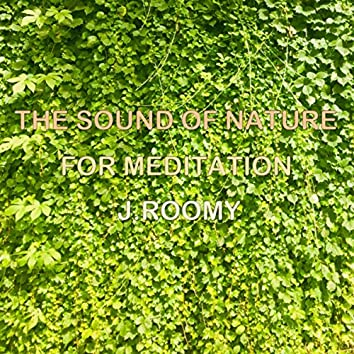 The Sound of Nature For Meditation