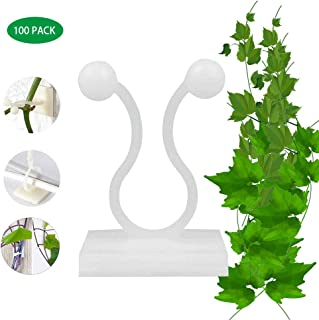 Plant Climbing Wall Fixture Clips, 100Pcs Wall Sticky Hook Vines Fixing Clip Vines Holder for Home Decoration (Medium)