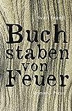 Buchstaben von Feuer: Roman (German Edition)