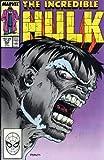 Incredible Hulk Visionaries - Peter David, Vol. 3