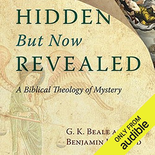 Hidden But Now Revealed audiobook cover art