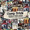 グレイテスト・ヒッツ-ジャパニーズ・シングル・コレクション-(DVD付)