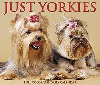 Best yorkie calendar 2019 Reviews