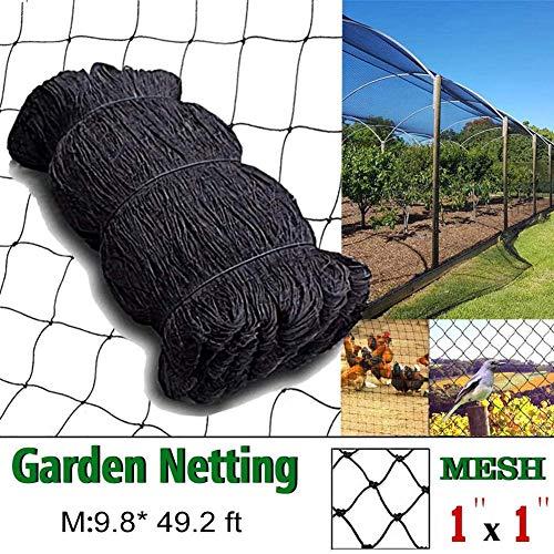 Net voor tuinplanten, bescherming tegen insecten, voor tuin, bescherming tegen insecten, tegen parasieten en vogels.