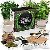 屋内ハーブガーデンスターターキット、ハーブシードガーデニングキット植木鉢と培養土、DIYホームシードスターター成長植物キット