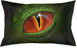 Cinlanck Green Dragon`s Eye Digital Realistic Painting Custom Rectangular Pillowcase Polyester Velvet Material 30x20in for Sofa Bedroom