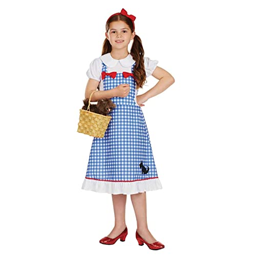 15093142d13 Dorothy Wizard of Oz Costume: Amazon.co.uk
