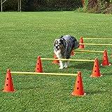 Superhund24 Agility-Hürde, rot/gelb, 5 Hürden für Agility-Training