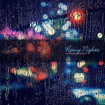 비 내리는 밤거리