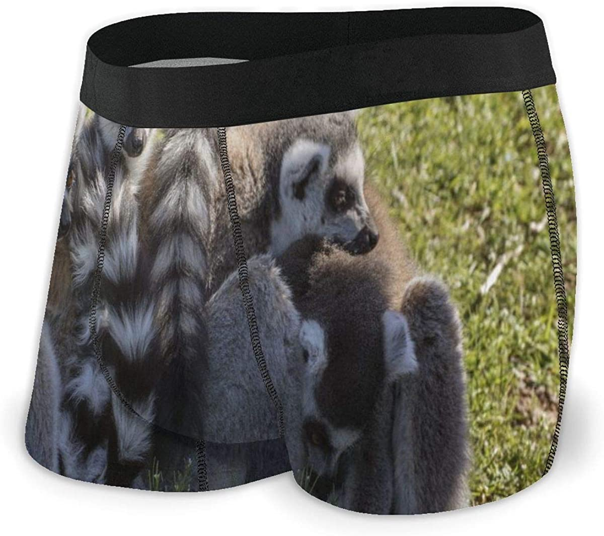 Mens Boxer Briefs Cute Animal Lemures Family Boys Trunks Underwear Short Leg Breathable Man