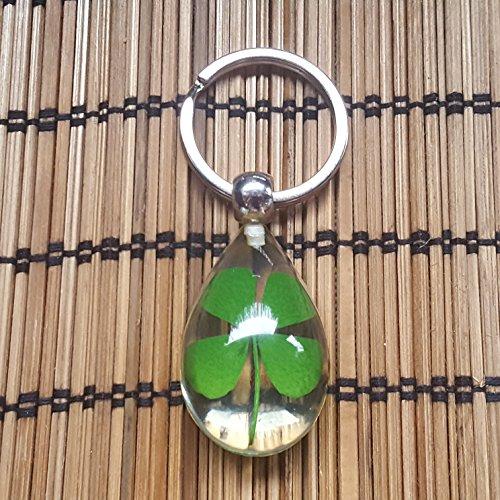 Fancychain Echtes Vier-blättriges Kleeblatt Schlüsselanhänger Schlüsselring Schlüsselbund Glücksklee Glücksbringer grünes Blatt Natur Glück
