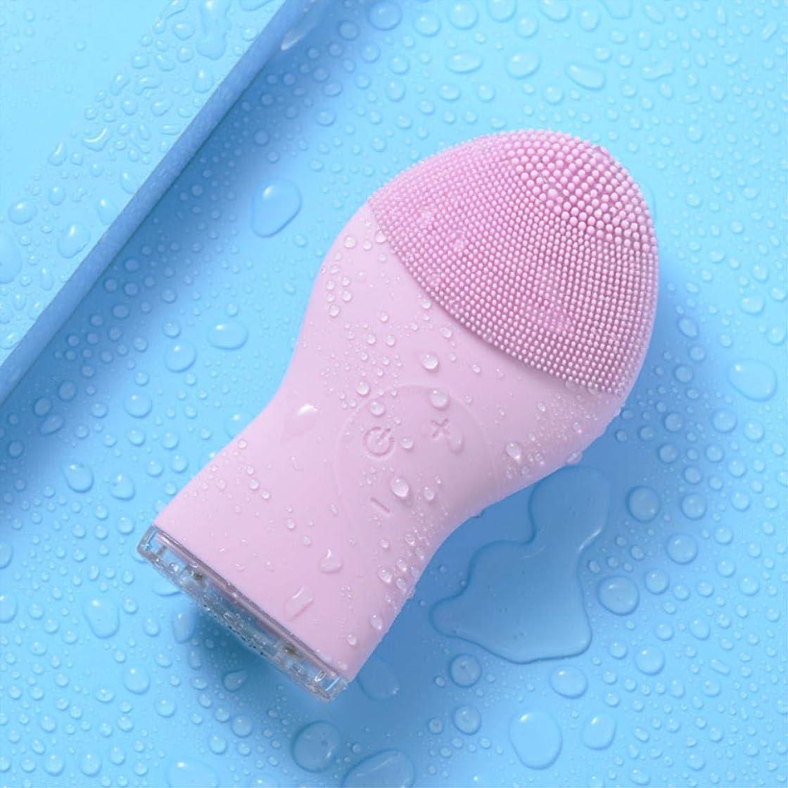 将来のカウンタ米ドル美しさの浄化装置電気シリコーンフェイスウォッシュ毛穴クリーンホーム充電式洗浄アーティファクト,Pink