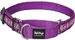 Red Dingo Martingale Daisy Chain 15mm Choke Collar, Small/Medium, Purple