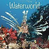 Waterworld - Broschur Kalender 2021 - Korsch-Verlag - Kalender mit Platz für Eintragungen - offen 29,8 cm x 59,8 cm