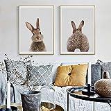 bdrsjdsb Niedlichen Tier Kaninchen Leinwand Poster Kein