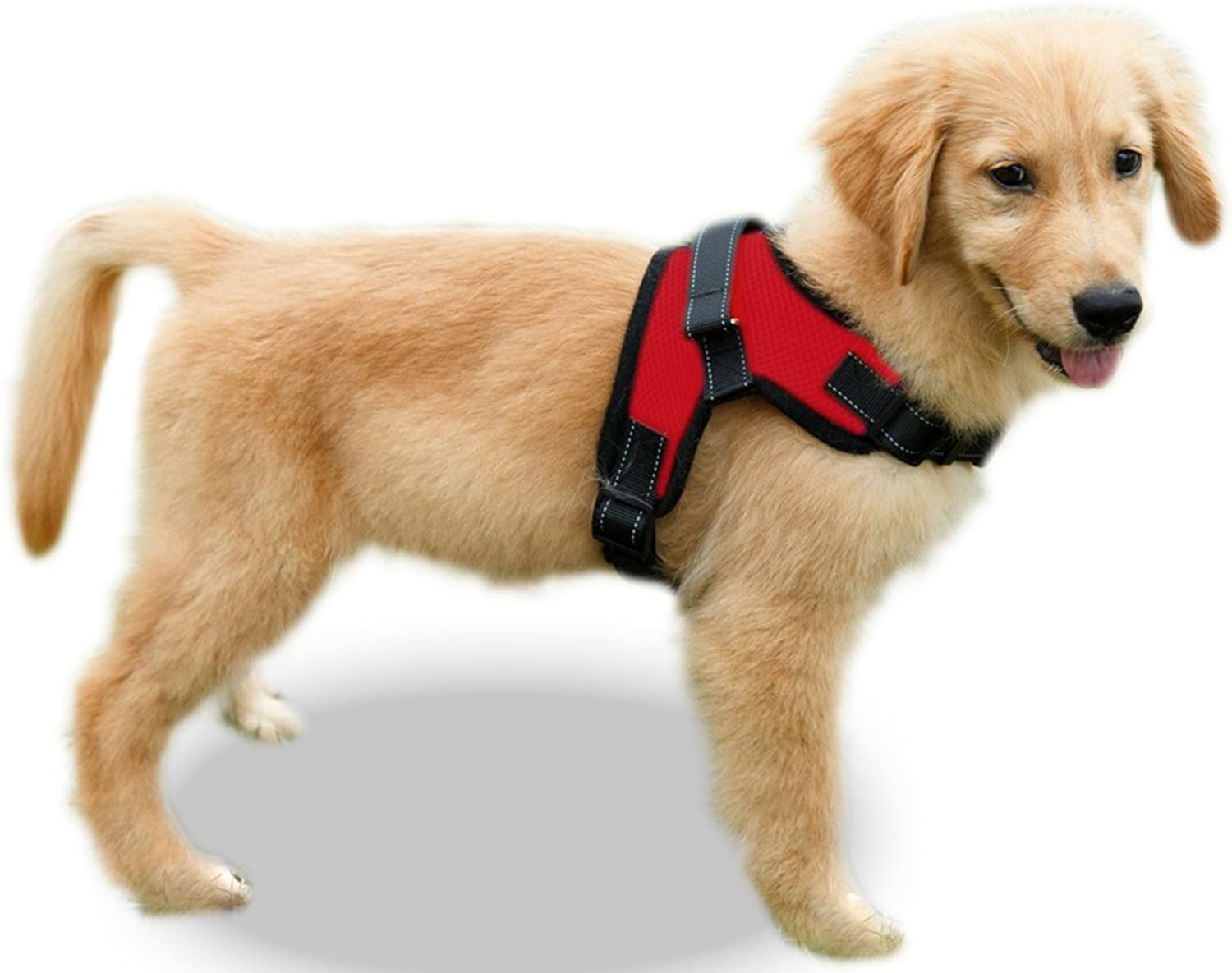 Copatchy No Pull Reflective Adjustable Dog Harness with Handle (Large Red)