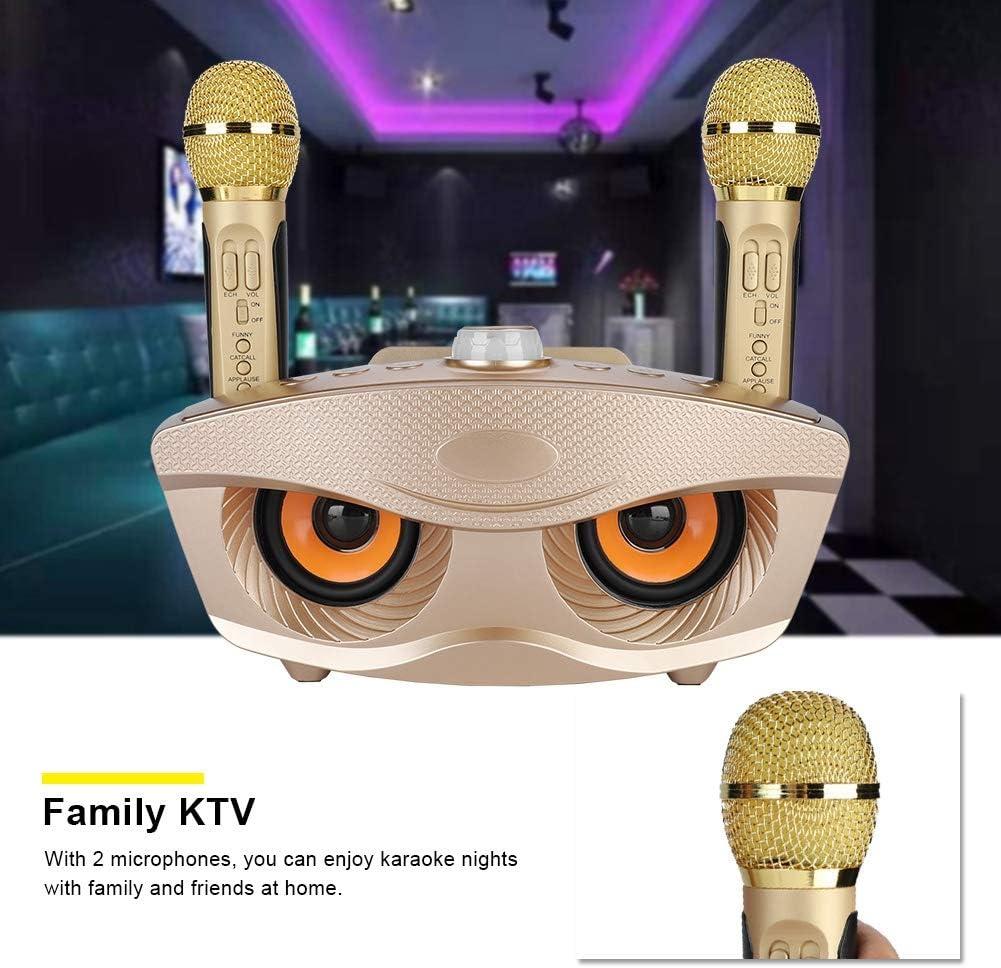 Lazmin112 Altoparlante Portatile Senza Fili Bluetooth con Microfono Altoparlante Portatile per Uso Domestico KTV Sound Party con USB TF e Due microfoni Oro