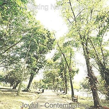 Joyful - Contemplating