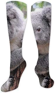JackyCH, NA - Calcetines de compresión para Mujer y Hombre, diseño de Oso Koala hasta la Rodilla