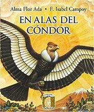 En Alas del Condor (Puertas al Sol)