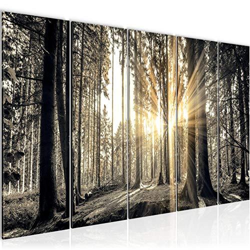 Runa Art GmbH -  Bild Wald Landschaft