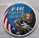 F-16 USAF Wild...image