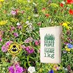 The Grass People Shaded Areas Wildflower Seed, Annuals & Perennials, Perfect for Problematic Soil, Shaded Gardens, Dappled Shade, Attracts Bees and Wildlife, RHS Perfect for Pollinators - 100g, 1kg