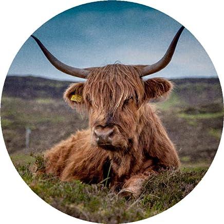 Azeeda 24 x 40mm Redondas Vaca de la Monta/ña Pegatinas SK00002076
