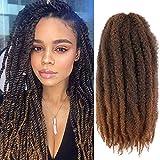 Wodun Marley Twist Hair Marley Hair for Twist Marley Twist Braid Hair Afro Kinky Braiding Hair 24 inches 6 Packs Maley Kinky Twist Hair for Braiding. (24 inch-6pacs, T 30)