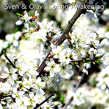 Spring Awakening (Radio Mix)