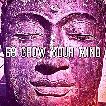 68 Grow Your Mind