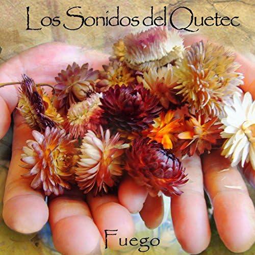 Los Sonidos Del Quetec