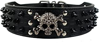 Dogs Kingdom Skull Punk Style Spiked Studded Pu Leather Dog Collars Pitbull Boxer Mastiff Pet Collar