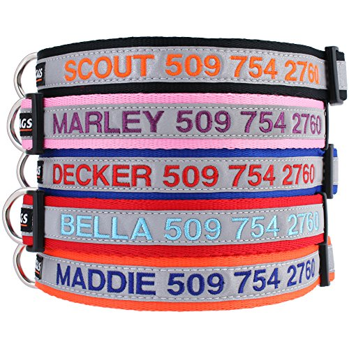 1. GoTags Personalized Reflective Collar