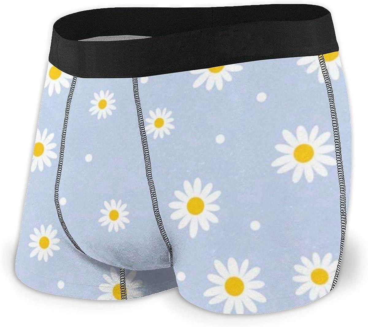 Mens Boxer Briefs Vintage Cute Daisy Lovely Breathable Underwear