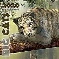 Big Cats 2020 Mini Wall Calendar