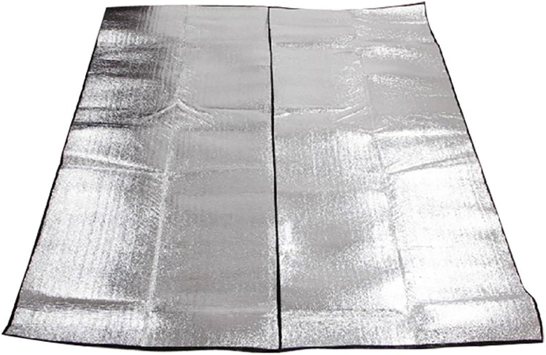 Picnic Blanket Waterproof Outdoor Waterproof Picnic Mat 200200 Picnic Blanket Camping Aluminum Film Moistureproof Mat Crawling Mat Thicken Spring Tour (Size Optional) Picnic Rug