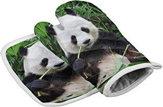 Set of Oven Mitt and Pot Holder, Cute Panda Eatign Bamboo Oven Gloves Heat Resistance Non-Slip Surface for Kitchen BBQ Coo...
