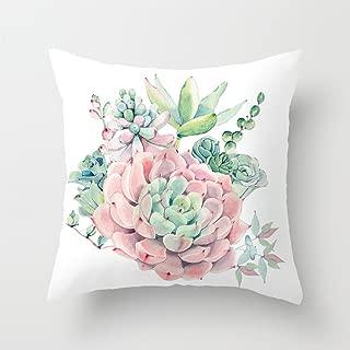 Best green rose cactus Reviews