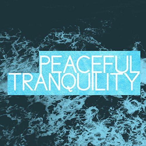 Zen Meditate, Meditation Deep Sleep & Peaceful Meditation Music
