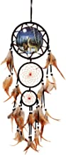 wgg Dream Catcher Indian Style Oil Painting Wolf Hand-Woven Car Pendant Wall Hanging Home Decorations(Wolf)