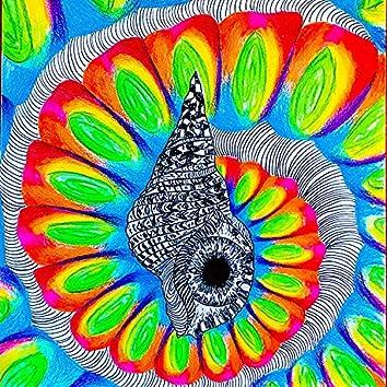Seashells (feat. God Molecule)