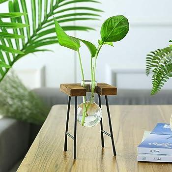 TZUTOGETHER escritorio Florero de vidrio con marco de banco de madera maciza,Florero de bombilla con soporte de madera,Jarrones de plantas hidropónicas,vidrio transparente,para la decoración del hogar