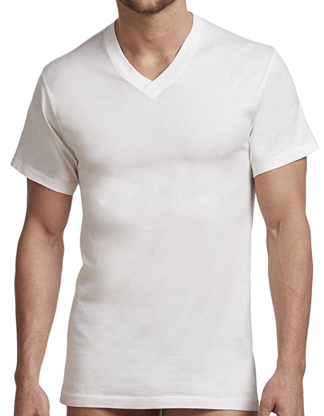 Stanfield's Men's Cotton Big Tall Vneck Undershirt (2 Pack)
