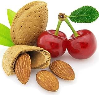 Cherry Almond Lotion - 8 oz - Natural - Vegan - GMO Free - Handmade - Face & Body